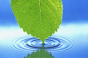 Why Alkaline Ionized Water Is Tasty and Useful Water for Everyday Life?